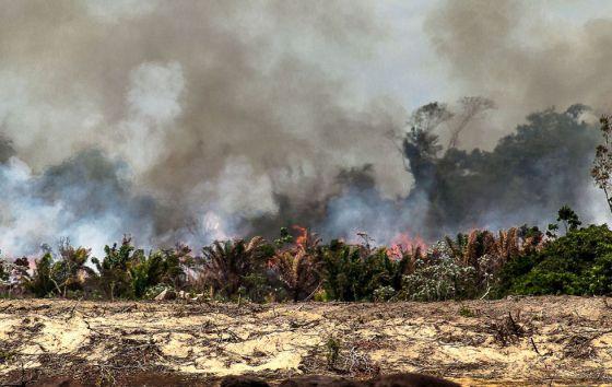 Ilha do Xingu queimando para dar lugar à Belo Monte