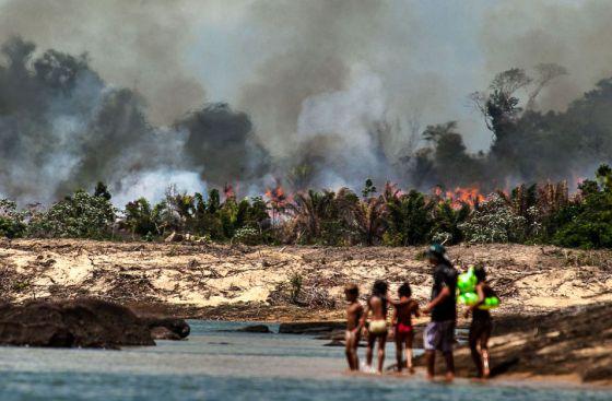 Uma das ilhas do Xingu, desmatada e queimada para o enchimento do lago de Belo Monte/ Fotos: Lilo Clareto