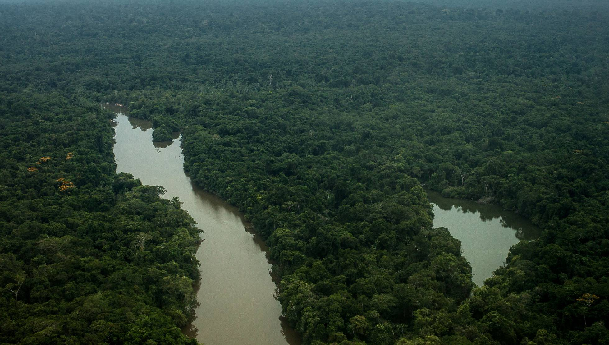 Foto aérea sobre a Terra do Meio, no Pará, hoje ameaçada pela grilagem LILO CLARETO/ARQUIVO PESSOAL