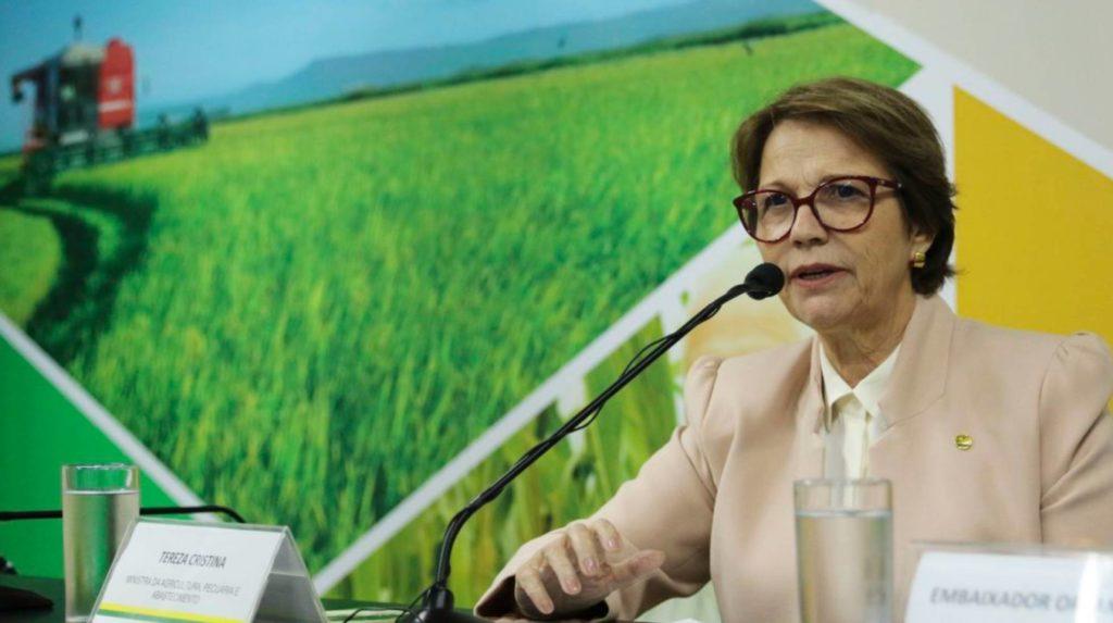 A ministra Tereza Cristina. (Foto: Valter Campanato/ Agência Brasil/ Reprodução do El País