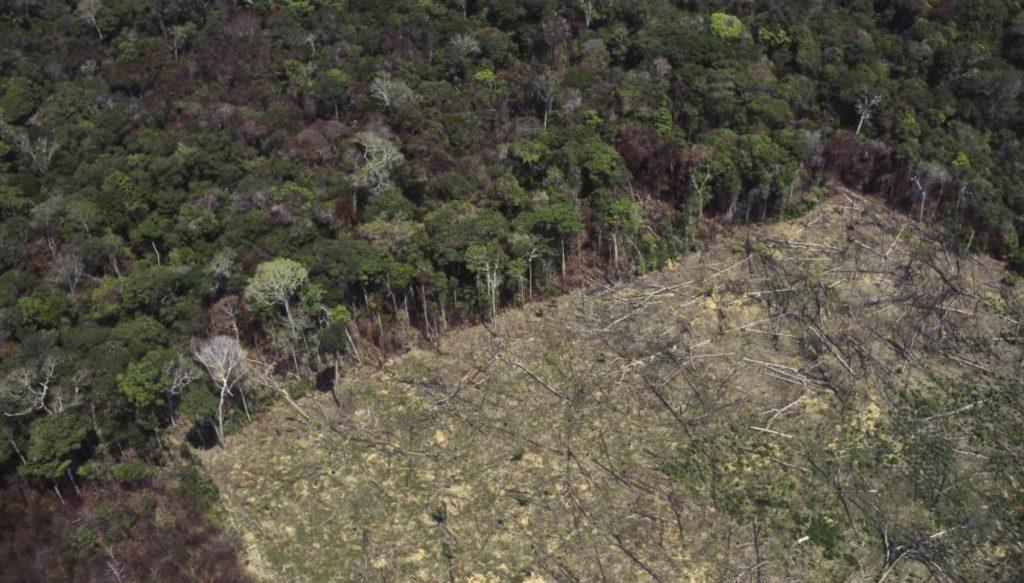 Una zona deforestada para el cultivo agrícola en la Amazonia. (Foto: Jose Caldas/Getty Images/Reprodução do El País)