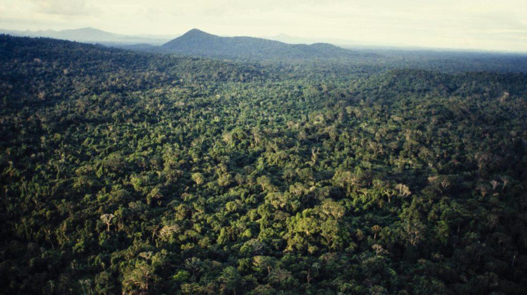 Vista aérea del Amazonas, en el norte de Brasil. (Foto: Marco Antonio Rezende/ GETTY/ Reprodução do El País)