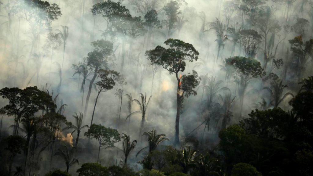 Incendio en un área de la selva amazónica cerca de Porto Velho, estado de Rondonia (Brasil), en septiembre. (Foto: BRUNO KELLY REUTERS/Reprodução do El País)